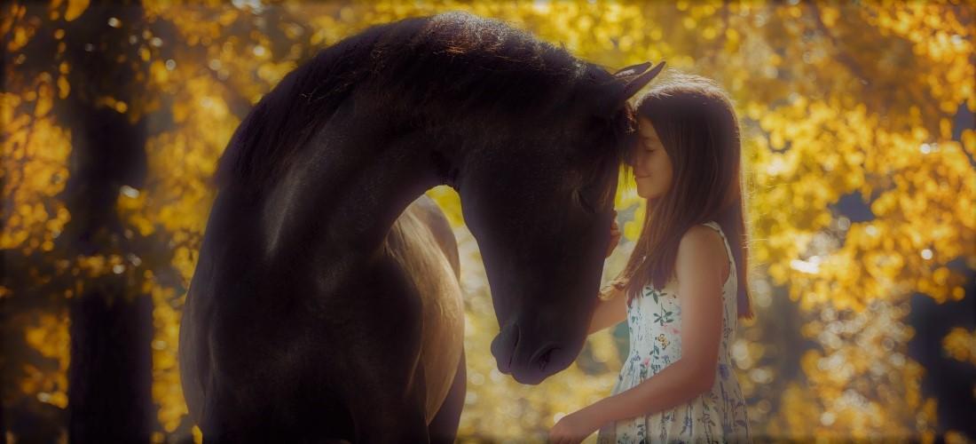 girl-horse-b_1100x500